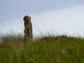 barbrook merin stone beeley derbyshire ani 054