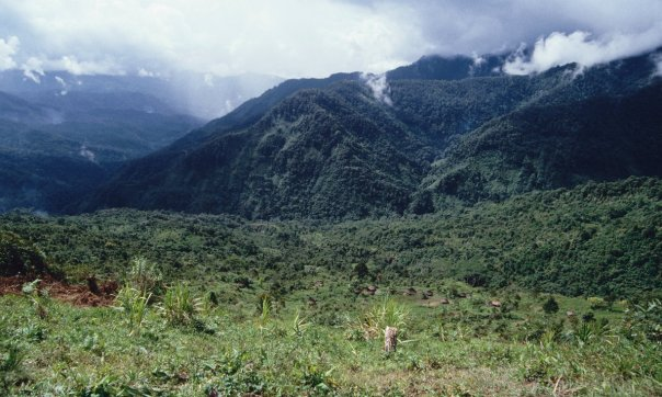 Mountains near Membegan, West Papua. Photograph: Jane Sweeney/Getty Images/Lonely Planet Images