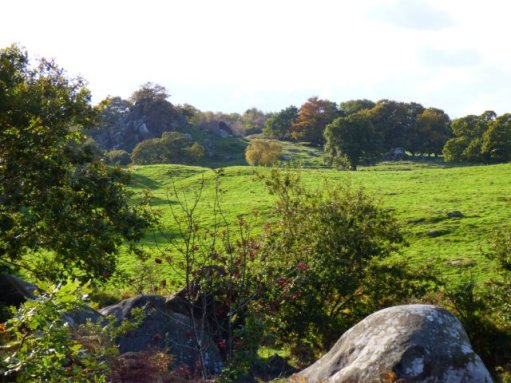 sheep-hordrons-nine-stones-robin-hoods-195