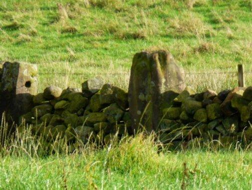 sheep-hordrons-nine-stones-robin-hoods-260