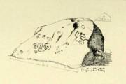 Allen's 1879 drawing